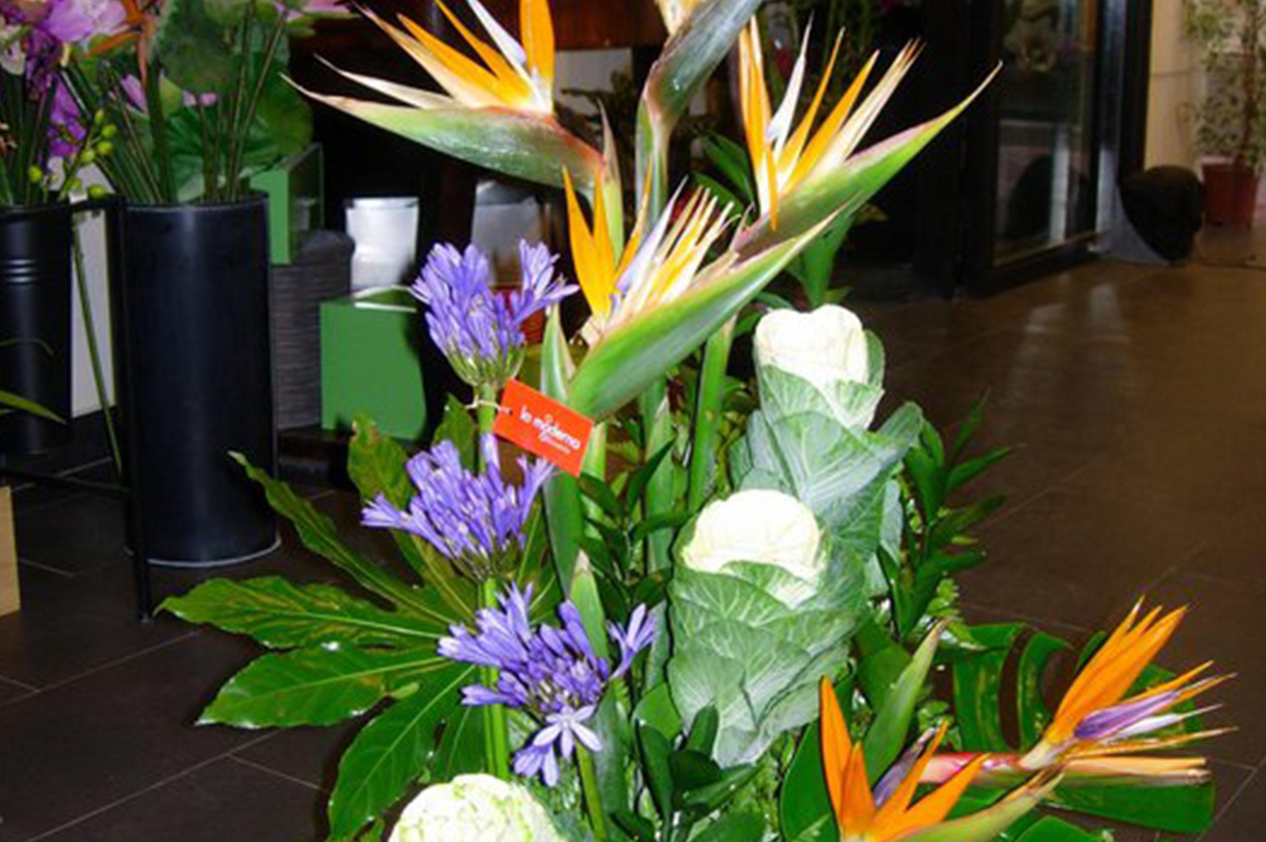 Floristeria En Zaragoza Floristeria La Moderna - Centros-florales-modernos